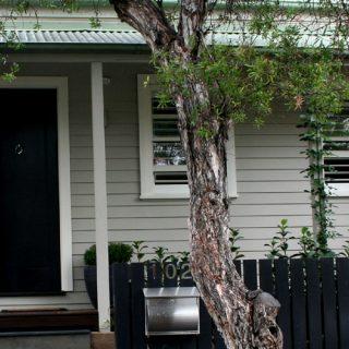 Residential Renovation - Balmain 1